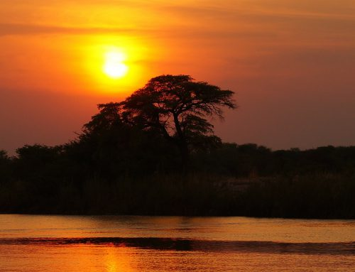 WHY BOTSWANA IS A WONDERFUL CHOICE AS A FIRST TRIP TO AFRICA